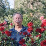Tom Rumple, dahlia grower